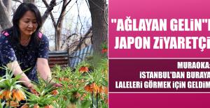 """""""AĞLAYAN GELİN""""E JAPON ZİYARETÇİ"""