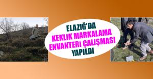 Elazığ'da Keklik Markalama Envanteri Çalışması Yapıldı