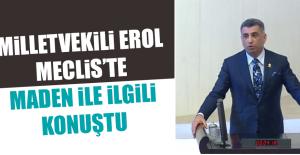 Milletvekili Erol, Meclis'te Maden İle İlgili Konuştu