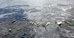 WWF, Plastik Kirliliğine Dikkat Çekmek İçin 450 Yıllık Bir Canlı Yayın Başlattı