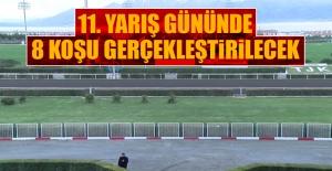 11. Yarış Gününde 8 Koşu Gerçekleştirilecek