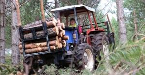 Ailesiyle omuz omuza çalışan orman işçisi Ülkü Durmuşoğlu