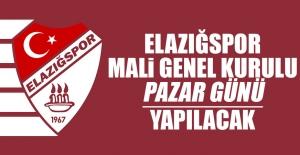 Elazığspor Mali Genel Kurulu Pazar Günü Yapılacak