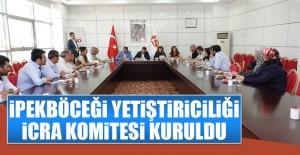 İpekböceği Yetiştiriciliği İcra Komitesi Kuruldu