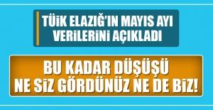 TÜİK Elazığ'ın Mayıs Ayı Verilerini...