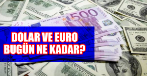 16 Temmuzda Dolar ve Euro Kaç TL?