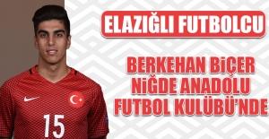 Berkehan Biçer; Niğde Anadolu FK'de