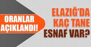 Elazığ'da Kaç Tane Esnaf Var?