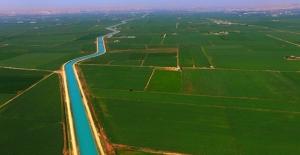 GAP ile Harran Ovası'nın ekonomiye katkısı arttı