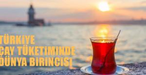 Türkiye Çay Tüketiminde Dünya Birincisi