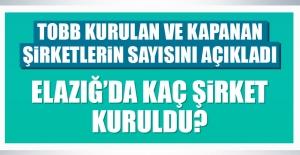 Elazığ'da Kaç Şirket Kuruldu?