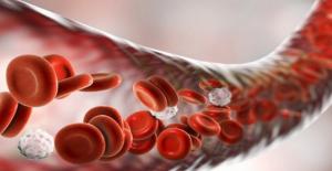 Kan Hücreleri Uzaktan Kontrol Edilebilecek