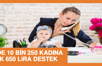 Bakan Açıkladı: 7 İlde 10 Bin 250 Kadına Aylık 650 Lira Destek