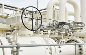 Türkiye'nin doğal gaz ithalatı Temmuz'da azaldı