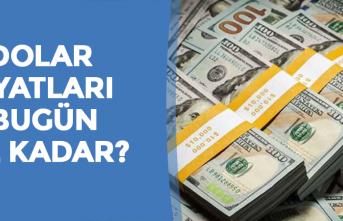 15 Kasım Dolar Kuru