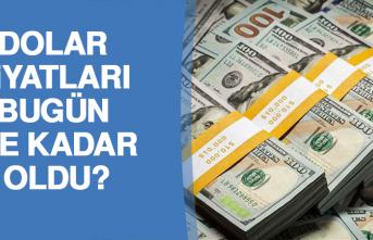 1 Kasım Dolar Kuru