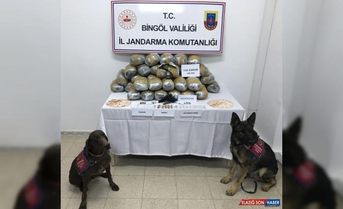 Bingöl'de narkotik köpeklerin desteğiyle 39 kilogram esrar ele geçirildi