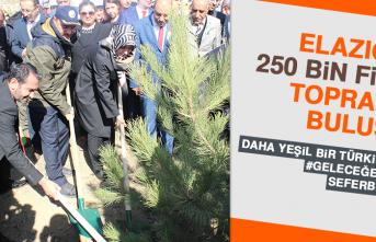 Elazığ'da 250 Bin Fidan Toprakla Buluştu