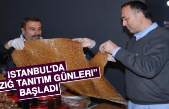 """İstanbul'da """"Elazığ Tanıtım Günleri"""" başladı"""