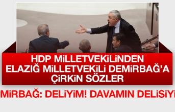 HDP Milletvekilinden, Zülfü Demirbağ'a Çirkin Sözler