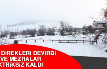 Kar Direkleri Devirdi, Köy ve Mezralar Elektriksiz Kaldı