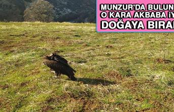 O Kara Akbaba İyileşti Doğaya Bırakıldı
