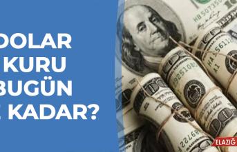 19 Ocak'ta Dolar Kuru