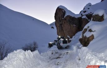Hakkari'de kar nedeniyle yaylada mahsur kalan at sürüsü kurtarıldı