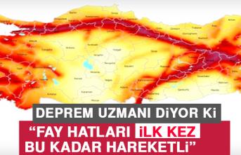 Prof.Dr. Ercan: 2020 Türkiye'nin Deprem Yılı Olacak