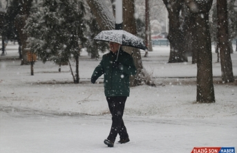 Tunceli ve Erzincan'da kar yağışı hayatı olumsuz etkiliyor