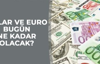19 Mart Dolar - Euro Fiyatları
