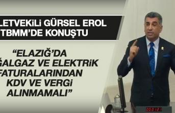 Milletvekili Gürsel Erol, TBMM'de Elazığ Depremiyle İlgili Konuştu