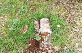 Bitlis'te toprağa gömülü 20 kilogram el yapımı patlayıcı ele geçirildi
