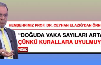 Prof. Dr. Ceyhan'dan Kritik Değerlendirme