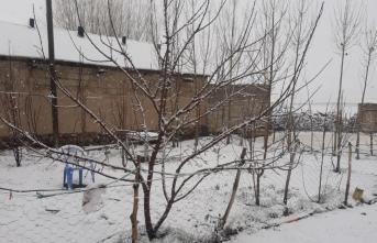 Van'ın yüksek kesimlerine nisanda kar yağdı