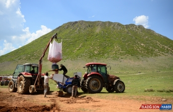 Bitlis'te sertifikalı patates tohumu ekimine başlandı