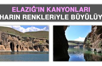 Elazığ'ın Kanyonları Baharın Renkleriyle Büyülüyor