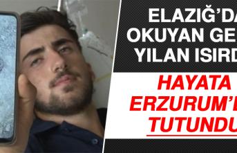 Elazığ'da Okuyan Genci Yılan Isırdı! Hayata Erzurum'da Tutundu