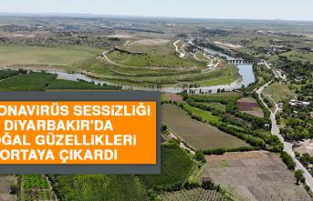 Korona Virüs Sessizliği Diyarbakır'da Doğal Güzellikleri Ortaya Çıkardı