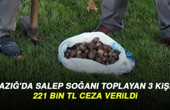 Elazığ'da Salep Soğanı Toplayan 3 Kişiye 221 Bin TL Ceza Verildi
