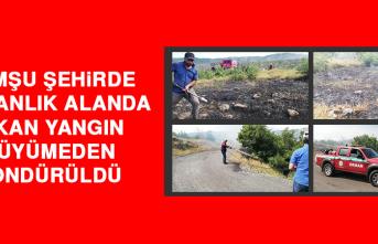 Komşu Şehirde Ormanlık Alanda Çıkan Yangın, Büyümeden Söndürüldü
