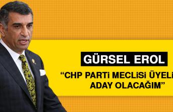 "Gürsel Erol: ""CHP parti meclisi üyeliğine aday olacağım"""