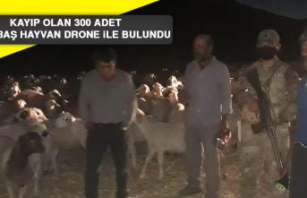 Kayıp Olan 300 Adet Küçükbaş Hayvan Drone İle Bulundu