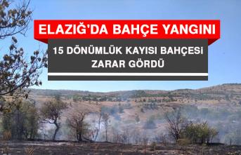Elazığ'da Bahçe Yangını