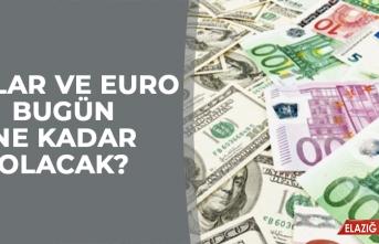 21 Eylül Euro ve Dolar Kuru