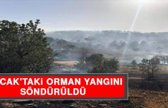 Arıcak'taki Orman Yangını Söndürüldü