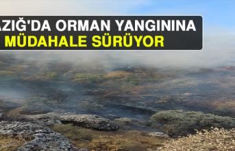 Elazığ'da Orman Yangınına Müdahale Sürüyor