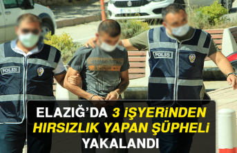 Elazığ'da 3 İşyerinden Hırsızlık Yapan Şüpheli Yakalandı