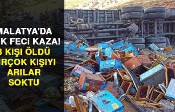 Malatya'da çok feci kaza! 3 kişi öldü, birçok kişiyi arılar soktu