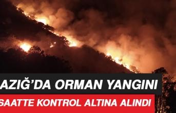 Orman Yangını 30 Saatte Kontrol Altına Alındı